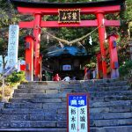 【口コミ】日本最大クラスの大フクロウ像のある鷲子山上神社へ行ってみよう