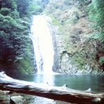 【口コミ・体験談】熊野那智神社・那智の滝を前に心が澄んで、癒され感マックス!