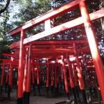 家内安全・商売繁盛のパワースポット【東伏見稲荷神社】