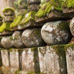 現地からお伝え!高野山のおすすめ観光スポット・トップ10!