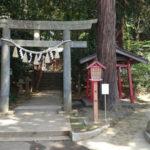 東日本一の大杉と神の啓示で知られる『麻賀多神社』とは