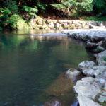 パワースポット!「水源の森百選」にも選ばれている「鵜の瀬」